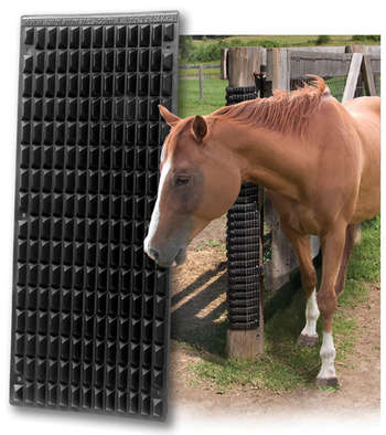 The Equine Scratcher picture
