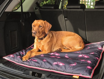 Digby & Fox Waterproof Dog Bed picture
