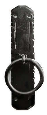 Tuscan Knocker  picture