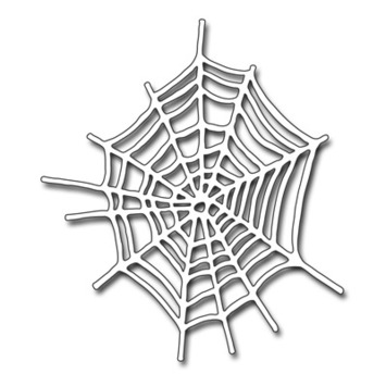 spider's internet picture
