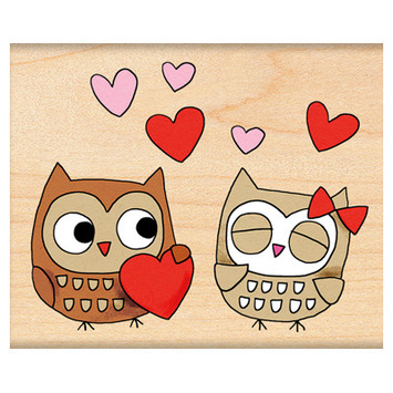 owl always love you picture