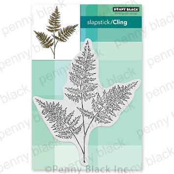 fresh fern picture