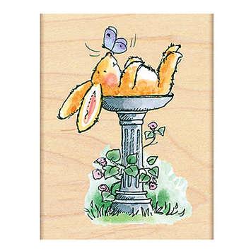 bunny bath picture