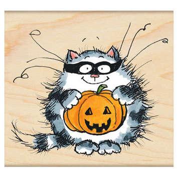catman picture