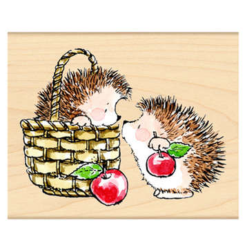hedgey gift picture