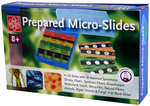12pc. Prepared Slides w/6 blanks