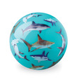 "4"" Sharks Playball"