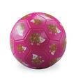 Size 3 Soccer Ball/Hedgehog