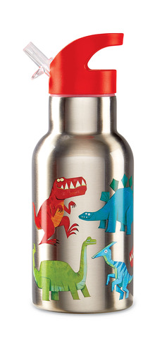 Stainless Bottle/Dinosaur picture