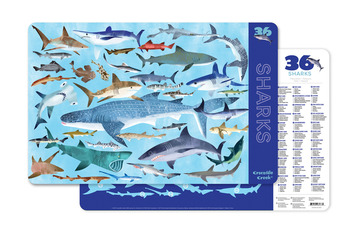 2-Sided Placemat/Sharks picture