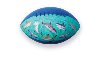 Sharks Football picture