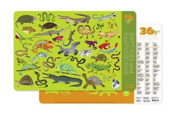 Reptiles & Amphibians Two-Sided Placemat picture