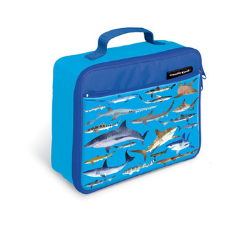 Sharks Lunch Box picture