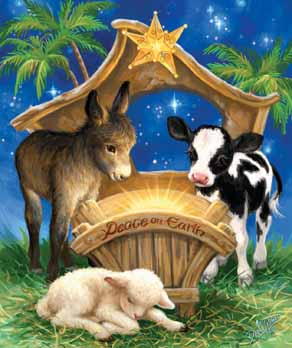 Born in a Manger picture