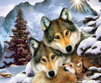 Wolves in Harmony