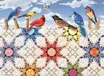 Feathered Stars