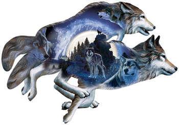 Moonlight Warrior picture