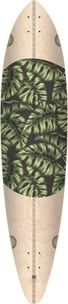 MONSTERA PINTAIL (NATURAL/MONSTERA) picture