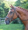 RED BARN ARENA ERGONOMIC  BRIDLE additional picture 1