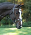 RED BARN STRIDE DRESSAGE BRIDLE