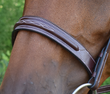 RED BARN SONOMA HUNTER BRIDLE additional picture 1