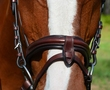 KL ITALIA BURGHLEY EVENTING BRIDLE additional picture 2
