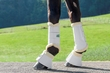 USG DRESSAGE BOOTS additional picture 2
