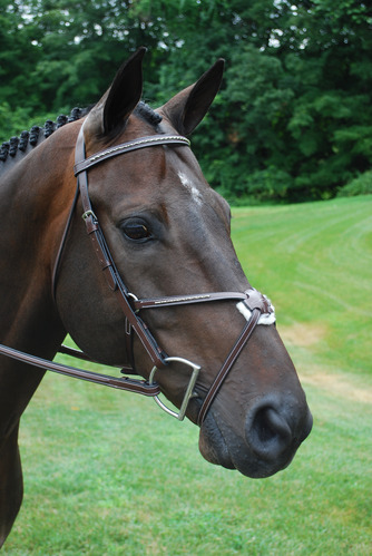 RED BARN MATRIX EVENTING BRIDLE picture