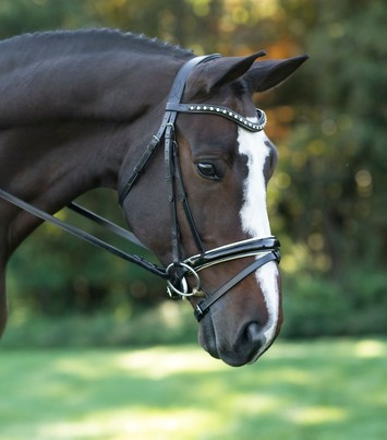 RED BARN STRIDE WEYMOUTH DRESSAGE BRIDLE picture