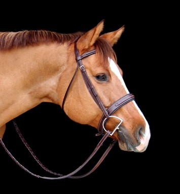 RED BARN TRYON HUNTER BRIDLE picture