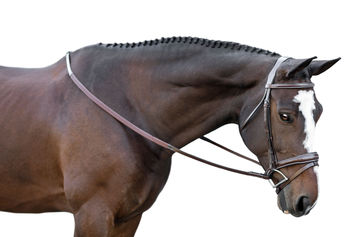KL ITALIA MILLBROOK EVENTING BRIDLE picture
