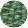 Naturally Nazareth Worsted, Spring