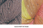 Block Party Eternity Scarf Kit #4260