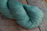 Crock-O-Dye -1527 Algae