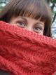2068 Kremlin Cowl additional picture 1