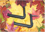 EZY® Climb Deluxe Tree Step - 50 Display