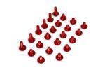 Frame & Plastic Bolt Kit, Red, 2020+ RR/RR-S